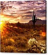 Desert Sunshine  Canvas Print