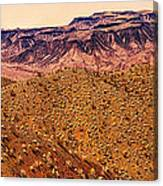 Desert View In Arizona By The Colorado River Canvas Print
