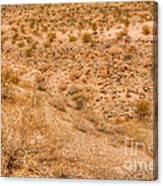Desert Vista Canvas Print