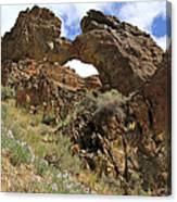 Desert Wildflowers Grand Arch  Canvas Print