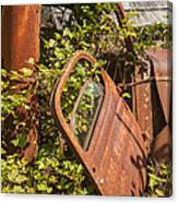 Deserted And Overgrown Canvas Print