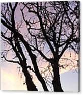 Deserted Tree Canvas Print