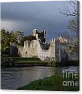 Desmond Castle Canvas Print