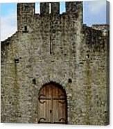 Desmond Castle Doors Canvas Print