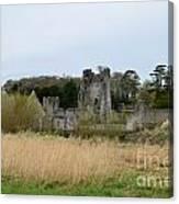 Desmond Castle Views Canvas Print