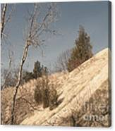 Desolate For A Season Canvas Print