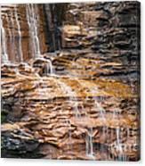 Desoto Falls Canvas Print