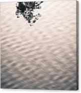 Detach Canvas Print