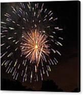Detroit Area Fireworks -10 Canvas Print