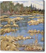 Devon Bog Oil Canvas Print