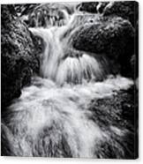 Devon River Monochrome Canvas Print