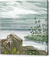 Devonian Period Canvas Print