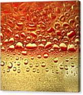 Dew Drops The Original 2013 Canvas Print