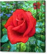 Dew Soaked Rose Canvas Print