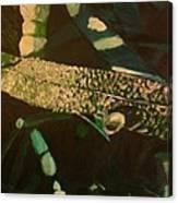 Dewy Blade Canvas Print