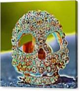 Dia De Los Muertos Skull Canvas Print