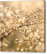 Diamonds And Pearls Canvas Print
