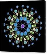 Diatom Assortment Canvas Print