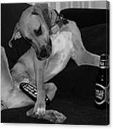 Diesel In Black And White Canvas Print
