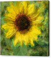 Digital Painting Series Sunflower Canvas Print