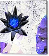 Digitally Altered Water Lily Canvas Print