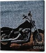 Digitally Airbrushed Street Bob Canvas Print