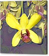 Digitised Orchids Canvas Print
