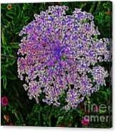 Digitized Snowflake Flower Canvas Print