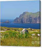 Dingle Coast Canvas Print