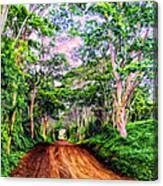 Dirt Road To Secret Beach On Kauai Canvas Print