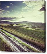 Dirt Track In Tuscany Canvas Print