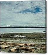 Low Tide Along The Discovery Passage Canvas Print