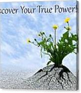 Discover Your True Power Canvas Print