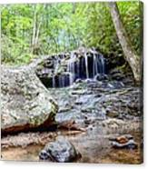 Disharoon Creek Falls Canvas Print