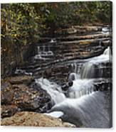 Dismal Falls Canvas Print