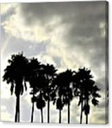 Disney's Epcot Palm Trees Canvas Print