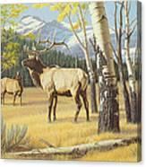 Distant Bugle Canvas Print