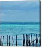 Distant Shore Canvas Print
