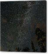 Disturbing The Milky Way Canvas Print