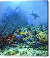 Diver At The Wreck Canvas Print