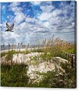 Divine Beach Day  Canvas Print