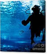 Diving In The Ocean Underwater Canvas Print