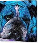 Do I Look Like I Am A Happy Dog Canvas Print