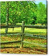 Do Not Fence Me In Canvas Print
