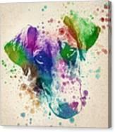 Doberman Splash Canvas Print