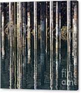 Dock Pilings Canvas Print