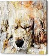 Dog 391-08-13 Marucii Canvas Print