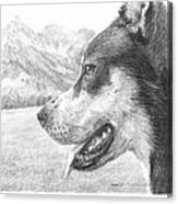 Dog And Mountains Pencil Portrait Canvas Print