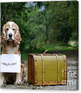 Dog And Suitcase Canvas Print