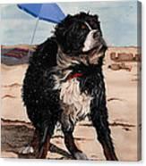 Dog Days Of Summer V2 Canvas Print